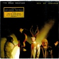 The Dead Weather -  Sea Of Cowards [CD] 2010